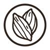 Raw cacao bean icon