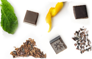 A mix of ingredients for delicious organic chocolate